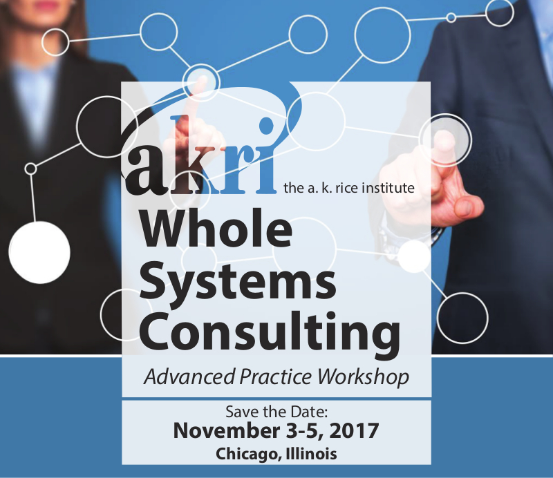 Whole Systems Consulting Advanced Practice Workshop 2017